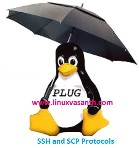 Understanding SSH and SCP Protocols in Linux Operating